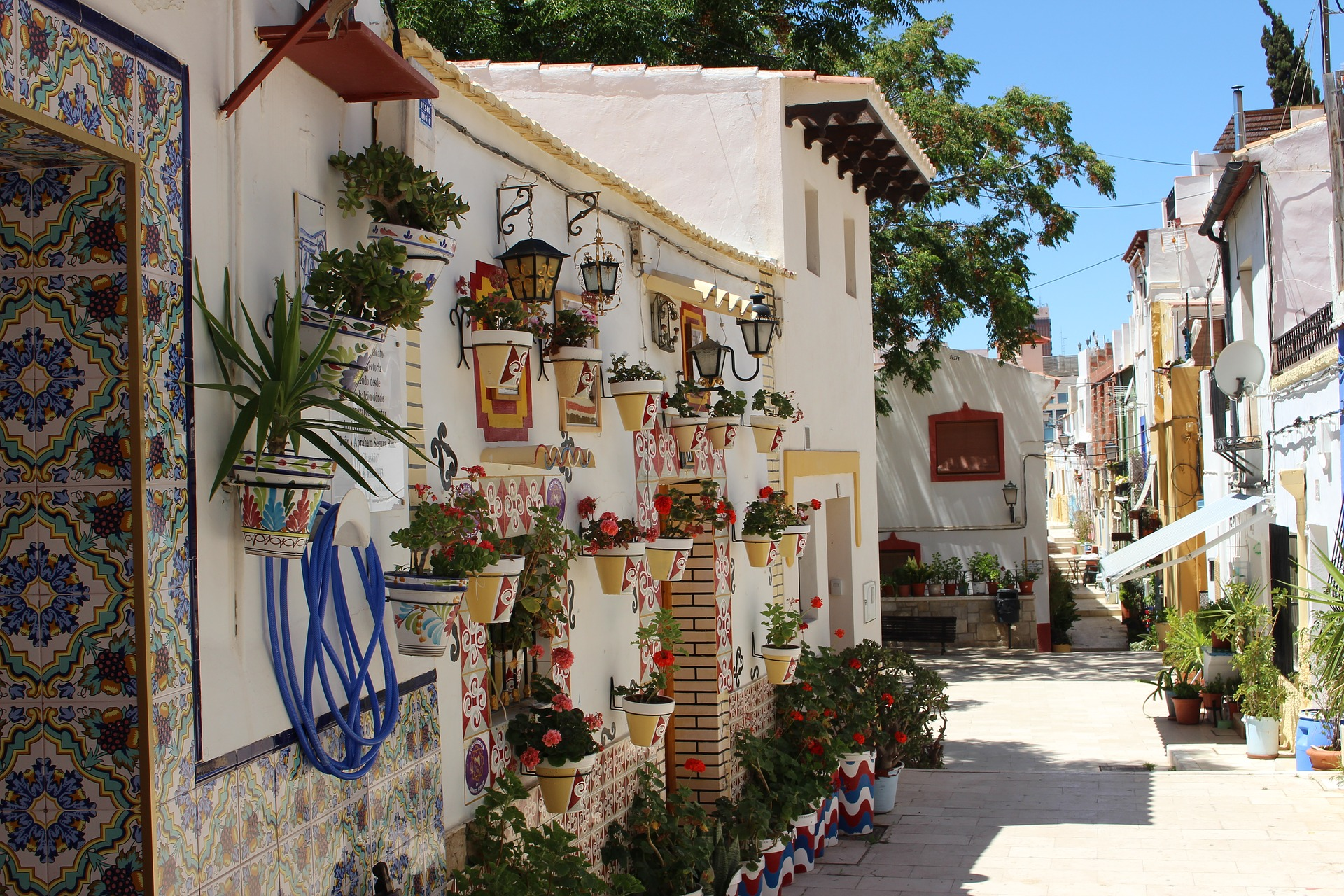 Beautiful pots of flowers in Alicante, Spain
