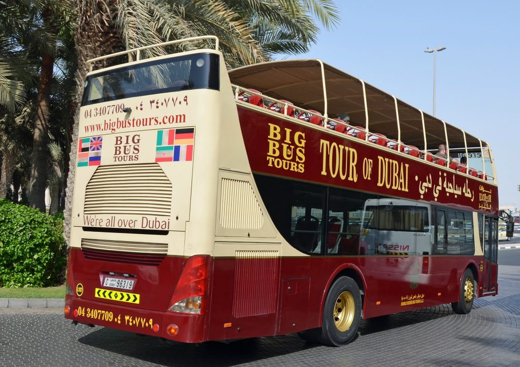 Explore city with a local bus tour