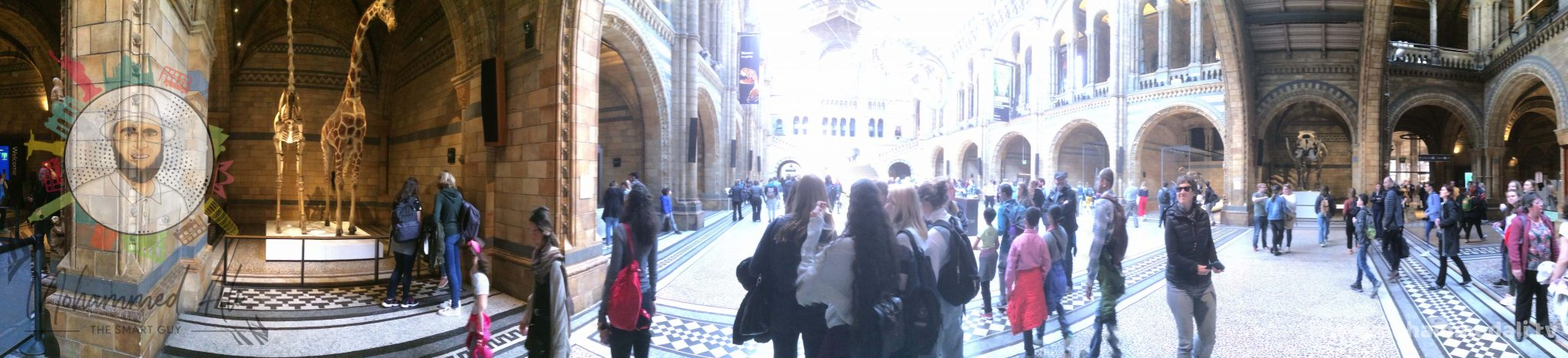 Inside Natural History Museum in South Kensington