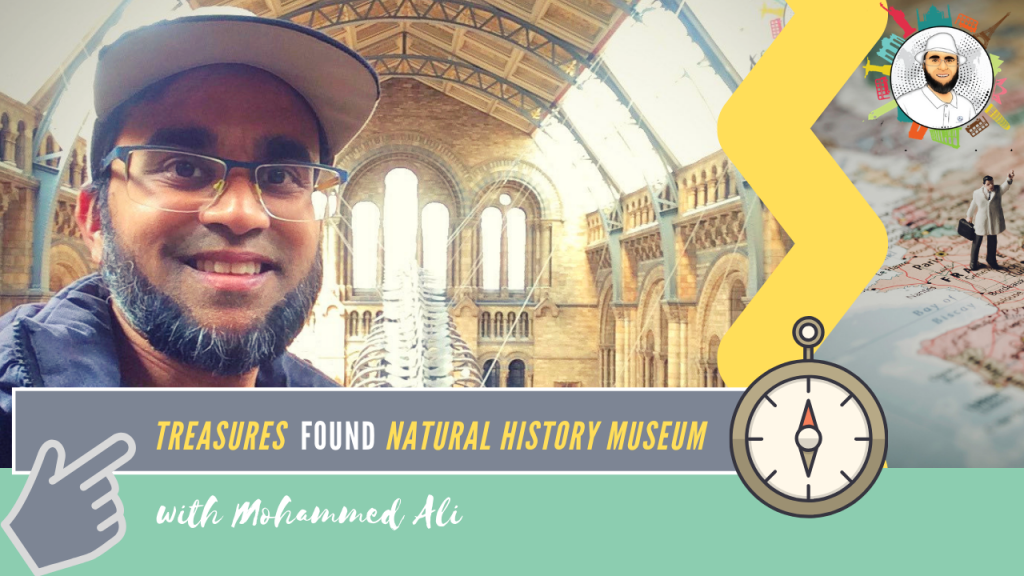 Day out in London | Treasures in British Natural History Museum