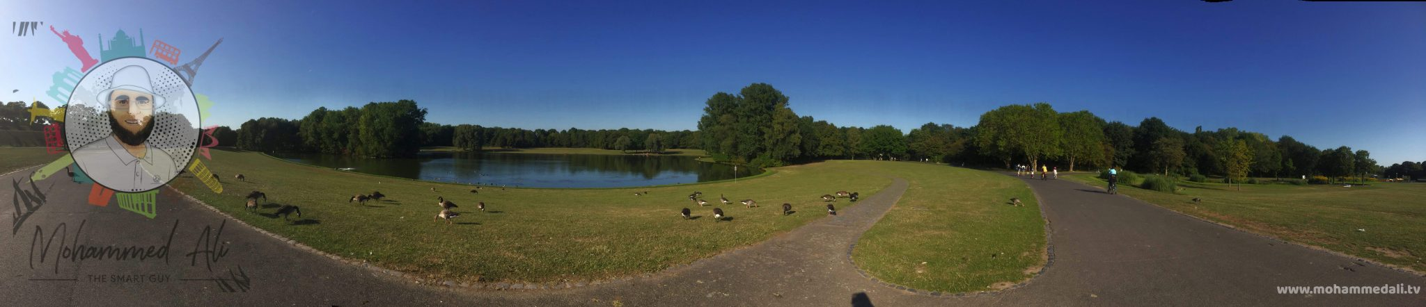 Awesome Boat lake with ducks in the Bonner Rheinaue in Germany